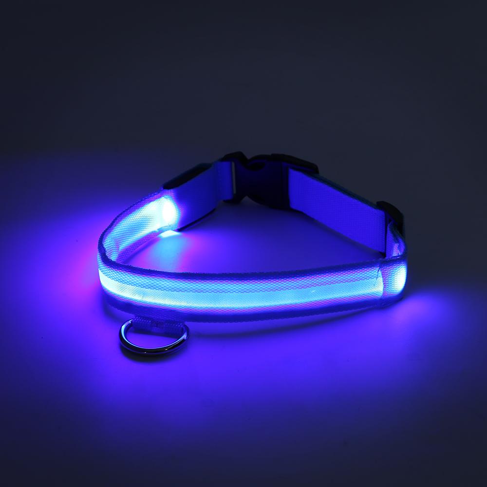 led halsband leuchthalsband usb hunde verstellbare farbige band blinklicht ebay. Black Bedroom Furniture Sets. Home Design Ideas